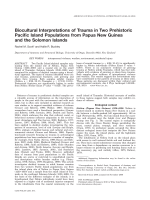 Biocultural interpretations of trauma in two prehistoric Pacific Island populations from Papua New Guinea and the Solomon Islands.