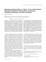 Biohistorical approaches to УraceФ in the United States  Biological distances among African Americans  European Americans  and their ancestors.