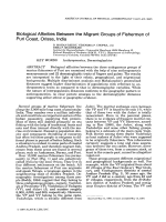 Biological affinities between the migrant groups of fishermen of Puri Coast  Orissa  India.