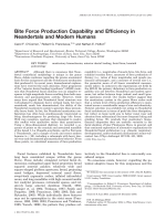 Bite force production capability and efficiency in Neandertals and modern humans.