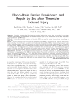 BloodЦbrain barrier breakdown and repair by Src after thrombin-induced injury.