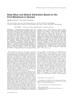 Body mass and stature estimation based on the first metatarsal in humans.