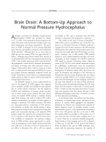 Brain drain  A bottom-up approach to normal pressure hydrocephalus.