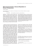 Brief communication  Arboreal bipedalism in Bwindi chimpanzees.