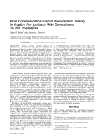 Brief communication  Dental development timing in captive Pan paniscus with comparisons to Pan troglodytes.