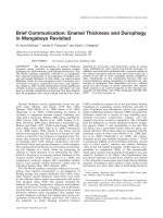 Brief communication  Enamel thickness and durophagy in mangabeys revisited.