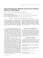 Brief communication  Minimally invasive bone sampling method for DNA analysis.