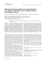 Brief communication  Molecular characterization of O alleles at the ABO locus in Chilean Aymara and Huilliche Indians.