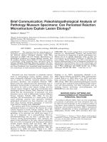 Brief communication  Paleohistopathological analysis of pathology museum specimens  Can periosteal reaction microstructure explain lesion etiology.