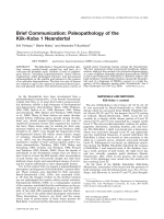 Brief communication  Paleopathology of the Kiik-Koba 1 Neandertal.