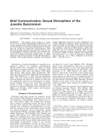 Brief communication  Sexual dimorphism of the juvenile basicranium.