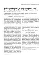 Brief communication  The Galler Collection  A little-known historic Swiss bone pathology reference series.