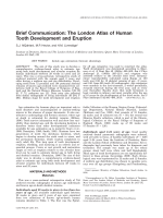 Brief communication  The London atlas of human tooth development and eruption.