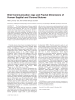 Brief Communication Age and fractal dimensions of human sagittal and coronal sutures.