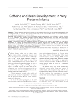 Caffeine and brain development in very preterm infants.