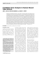 Candidate gene analysis in human neural tube defects.