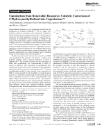 Caprolactam from Renewable Resources  Catalytic Conversion of 5-Hydroxymethylfurfural into Caprolactone.