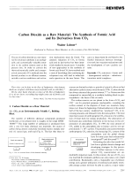 Carbon Dioxide as a Raw Material  The Synthesis of Formic Acid and Its Derivatives from CO2.