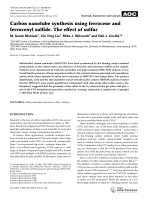 Carbon nanotube synthesis using ferrocene and ferrocenyl sulfide. The effect of sulfur