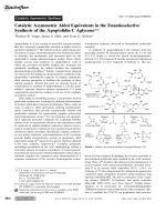 Catalytic Asymmetric Aldol Equivalents in the Enantioselective Synthesis of the ApoptolidinC Aglycone.