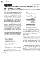 Cell-Free TranscriptionTranslation from PCR-Amplified DNA for High-Throughput NMR Studies.