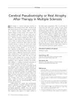 Cerebral pseudoatrophy or real atrophy after therapy in multiple sclerosis.