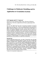 Challenges in Multiscale Modelling and its Application to Granulation Systems.