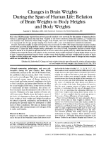 Changes in brain weights during the span of human life  Relation of brain weights to body heights and body weights.