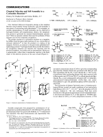 Chemical Selection and Self-Assembly in a Cyclization Reaction.