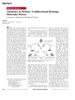 Chemistry in MotionЧUnidirectional Rotating Molecular Motors.