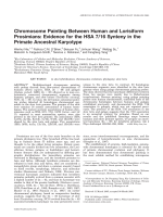 Chromosome painting between human and lorisiform prosimians  Evidence for the HSA 716 synteny in the primate ancestral karyotype.