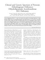 Clinical and genetic spectrum of pyruvate dehydrogenase deficiency  Dihydrolipoamide acetyltransferase (E2) deficiency.