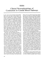 Clinical neurophysiology of conduction in central motor pathways.