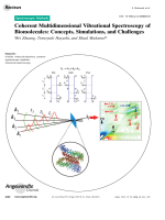 Coherent Multidimensional Vibrational Spectroscopy of Biomolecules  Concepts  Simulations  and Challenges.