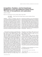 Competition  predation  and the evolutionary significance of the cercopithecine cheek pouch  The case of Cercopithecus and Lophocebus.