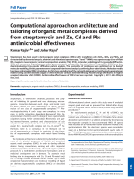 Computational approach on architecture and tailoring of organic metal complexes derived from streptomycin and Zn  Cd and Pb  antimicrobial effectiveness.