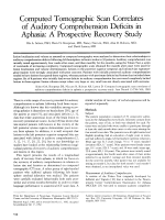 Computed tomographic scan correlates of auditory comprehension deficits in aphasia  A prospective recovery study.