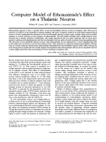 Computer model of ethosuximide's effect on a thalamic neuron.