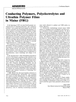 Conducting Polymers  Polyelectrolytes and Ultrathin Polymer films in Mainz (FRG).