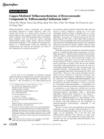 Copper-Mediated Trifluoromethylation of Heteroaromatic Compounds by Trifluoromethyl Sulfonium Salts.