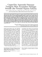 Copperzinc superoxide dismutase transgenic brain accumulates hydrogen peroxide after perinatal hypoxia ischemia.
