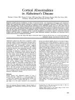 Cortical abnormalities in Alzheimer's disease.