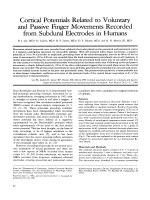 Cortical potentials related to voluntary and passive finger movements recorded from subdural electrodes in humans.