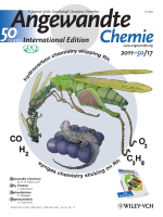 Cover Picture  Synergy of Homogeneous and Heterogeneous Chemistry Probed by InSitu Spatially Resolved Measurements of Temperature and Composition (Angew. Chem. Int. Ed. 172011)