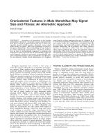 Craniodental features in male Mandrillus may signal size and fitness  An allometric approach.