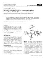 Crystallographic report  Bi(S2CNC5H10)2(NO3)(1 10-phenanthroline).