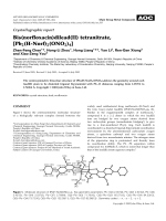 Crystallographic report  Bis(norfloxacin)dilead(II) tetranitrate  [Pb2(H-Norf)2(ONO2)4].