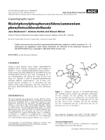 Crystallographic report  Bis(triphenylphosphoranylidene)ammonium phenyltetrachlorotellurate.