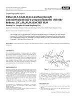 Crystallographic report  Chloro[1 3-bis[2-[2-[(4-methoxybenzyl) amino]ethylamino]]-2-propanol]zinc(II) chloride hydrate  [(C23H36N4O3)ZnCl]Cl╖H2O.