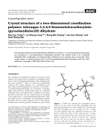 Crystallographic report  Crystal structure of a two-dimensional coordination polymer  tetraaqua-1 2 4 5-benzenetetracarboxylato(pyrazine)dizinc(II) dihydrate.